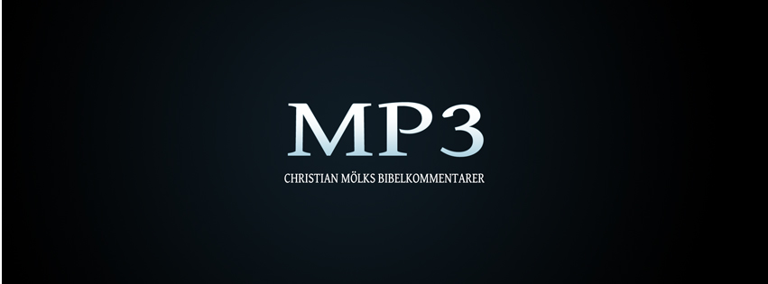 Bibelpredikningar